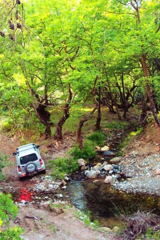 off_road_routes_-evia
